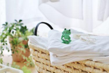 【梅雨の憂鬱】洗濯物の乾きにくさと気になるニオイ、部屋干しの工夫で解消しよう!